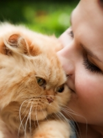 COMPASSION AND ACCURACY ON YOUR PET